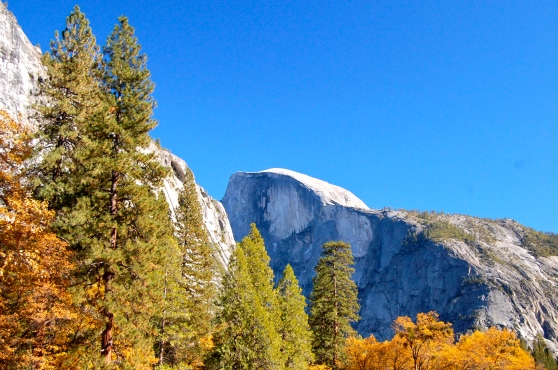 Half Dome, Yosemite in Fall